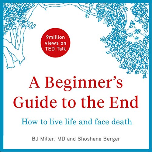 A Beginner's Guide to the End audiobook cover art