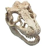 Acuario Dinosaurio Cráneo Adorno Novedad Pecera Decoración Terrario Dinosaurio Artificial Cráneo, 16X10x10cm