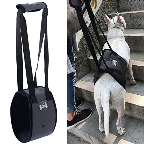 XYDZ Arnés de Ayuda para Perros, Perro Elevación Soporte Arnés Canino Ayuda Rehabilitación Arnés para Perros con Patas Traseras Débiles