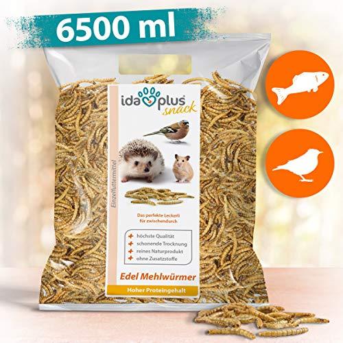 Ida Plus - Edel Mehlwürmer getrocknet - Insekten Snack für Igel, Hamster, Teichfische und Reptilien - Vogelfutter für Wildvögel - Naturprodukt ohne Zusatzstoffe - Wildvogelfutter 1000 g