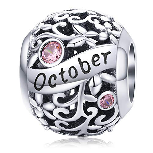 Lorrifal Month 925 Sterling Silver Original Birthstone Charms fit Pandora...