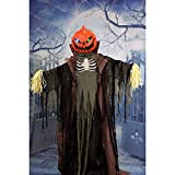 Haunted Hill Farm HHPUMP-4FLS Life-Size Animatronic Scarecrow, Color 5