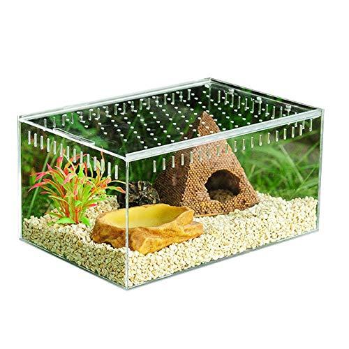 Hangarone Transparente Reptilienzuchtbox, Glas Vivarium Box Acryl Schiebedeckel Typ Fütterungsbox 20 x 15 x 10 cm