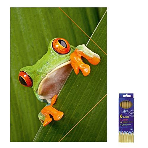 Kunststoffmappe mit Gummizugverschluss Rotaugenfrosch für DIN A3, Zeichenmappe inkl. 6er Pack Buntstifte, Sammelmappe, Mappe