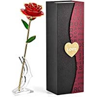 Forgifting Last Forever 24K Gold Dipped Infinity Rose