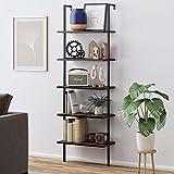 Nathan James Theo 5-Shelf Wood Modern Bookcase, Open Wall Mount Ladder Bookshelf with Industrial Metal Frame, Brown Walnut/Black