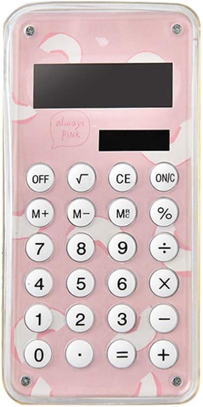 Fashionable Mesa Mall Solar Credence Calculator Portable Bird Cute
