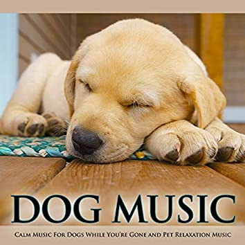 Dog Music: Calm Music For Dogs While You're Gone and Pet Relaxation Music