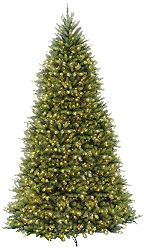 National Tree Company Pre-lit Artificial Christmas Tree | Includes Pre-strung 10 Function Multi-Color LED Lights and Stand | Dunhill Fir Tree - 12 ft