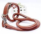 Orchidtent rundes ledernes Zugkraft-Seil im großen Hunde-und Mittel-Hundeseil-Rock-Paket-Punkt (L)