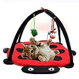 (つながる)Vedem ペット猫用 遊び プレー テント 猫舎ベッド (赤) 並行輸入品