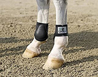 Best horse ankle boots Reviews