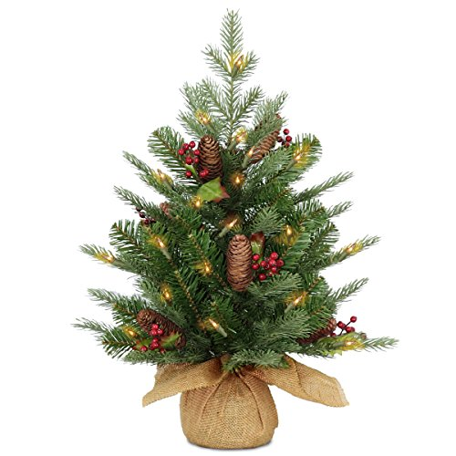 National Tree Company Pre-lit Artificial Mini Christmas Tree | Includes Small Lights, Cones, Red Berries and Cloth Bag Base | Nordic Spruce - 2 ft