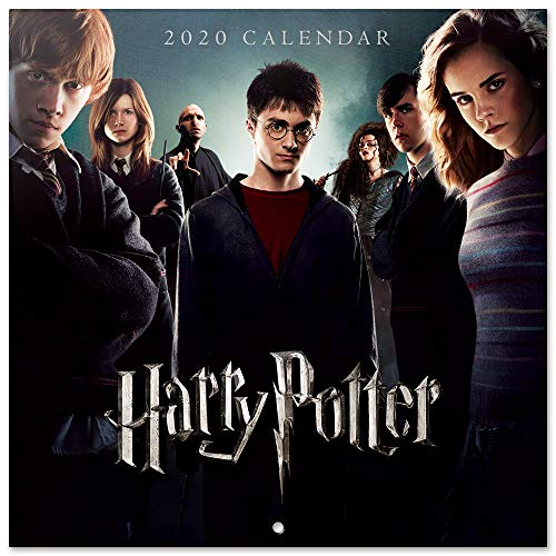 Erik, Calendario de Pared 2020 Harry Potter, Incluye Póster de Regalo, 30 x 30 cm