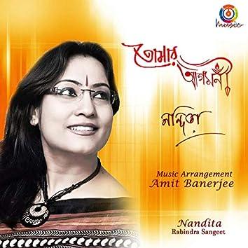 Amar Nayano Bhulano Ele - Single