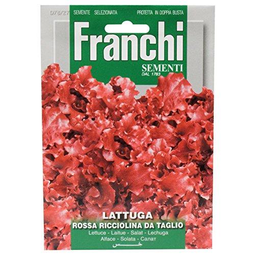 Seeds of Italy Ltd-Sementi