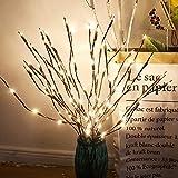 Leijing - Rami luminosi a LED, decorazione per feste e Natale, 3 Bouquets