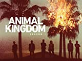 51m6PSILMpL. SL160  - Animal Kingdom Saison 5 : Les Cody reviennent enfin sur TNT en juillet