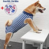 Dog Surgical Recovery Suit, Recovery Shirt for Male Female Dog Abdominal Wounds Bandages