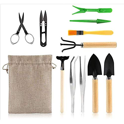 Queta 12 Stück Mini Gartenwerkzeug Sukkulenten Handwerkzeuge Set Miniatur Gartenarbeit Werkzeug für Sukkulenten Topfpflanze