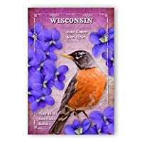 WISCONSIN BIRD AND FLOWER postcard set of 20 identical postcards. WI state symbols post cards. Made in USA. [並行輸入品]