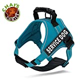 Chai's Choice Service Dog Vest Harness Best - 2 Reflective Service Dog Patches and Sturdy Handle. Matching Padded 3M Reflective Leash Available (X-Small, Blue)