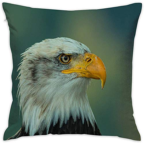 July Eagle Throw Kussensloop, onzichtbare ritssluiting, sloop, voor sofa, slaapkamer