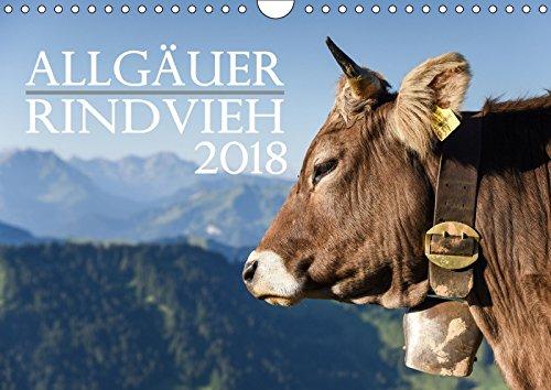 Allgäuer Rindvieh 2018 (Wandkalender 2018 DIN A4 quer): Ein Kalender für alle Allgäu- und Kuhliebhaber. (Monatskalender, 14 Seiten ) (CALVENDO Tiere) [Kalender] [Mar 23, 2017] Wandel, Juliane
