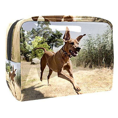 Rhodesian Ridgeback perro 18.5x7.5x13cm impermeable portátil bolsa cosmética de PVC bolsa de mano