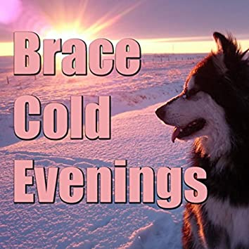 Brace Cold Evenings