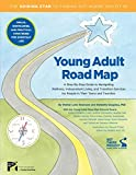 Young Adult Road Map: A Step-By-Step Guide to Wellness, Independent Living, and Transition Services for People in Their Teens and Twenties - Wendy L. Besmann
