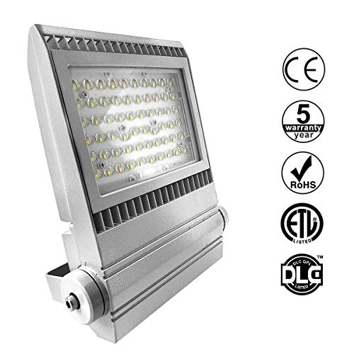 HAWEE 100W LED Strahler Modul LED Flutlicht Wasserdicht IP65 LED Fluter 12000 Lumen Außen Innen Flutlichtleuchte für Reklametafel, Landschaft, Garten, Stadion, Garage, Squares, Sportplatz, 4800-5300K