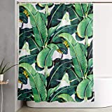 NiYoung Decorative Print - Easy Care Fabric Shower Curtain with Reinforced Buttonholes, for Bathroom Showers, Machine Washable - 60' x 70' - Martinique Banana Leaf