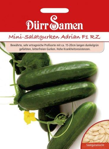 Dürr Samen 1013 Mini-Salatgurke Adrian F1 RZ (Salatgurkensamen)