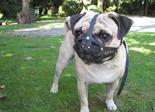 L&J Pets Uk Bozal de perro de cuero para perro carlino y otros hocico corto de cara plana (negro, M2)