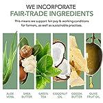 emerginC Scientific Organics Citrus-Kombucha Body Wash - Gentle Body Cleanser with Aloe, Spirulina + Tea (6.7 oz, 200 ml… 3
