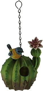 Things2Die4 Green Round Flowering Cactus Hanging Birdhouse, Pink