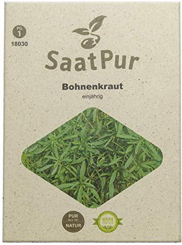 SaatPur Bohnenkraut Samen für ca. 400 Pflanzen