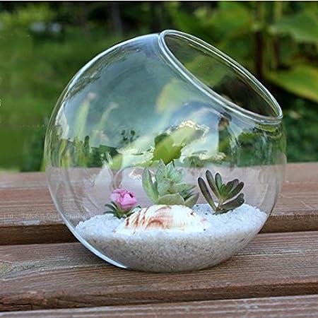 Florero de Cristal, Botella de Vidrio Oblicua Redonda Micro Paisaje Botella ecológica 15 cm de diámetro florero de Vidrio Transparente terrario decoración del hogar