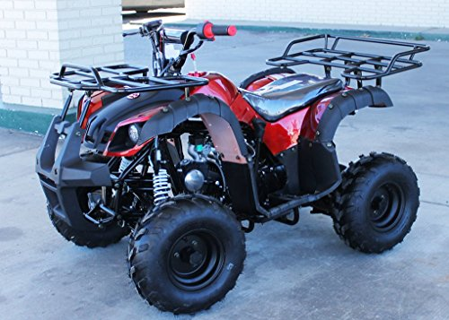 TaoTao Brand New ATA-125D Kids Gas Utility ATV