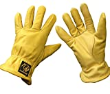 (Pack of 5 Pairs) Parweld Panther Premium Leather Drivers Glove - Fully Lined Tough Work Gloves