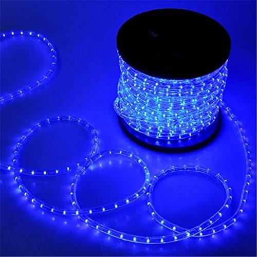 PYSICAL 110V 2-Wire Waterproof LED Rope Light Kit for Background Lighting,Decorative Lighting,Outdoor Decorative Lighting,Christmas Lighting,Trees,Bridges,Eaves (100ft, Blue)