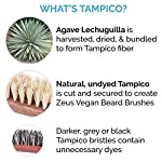 ZEUS 100% Vegan Beard Grooming Set - Vegan Formula Oil, Shampoo, and Conditioner with Natural Plant Fiber Bristle Brush… 7
