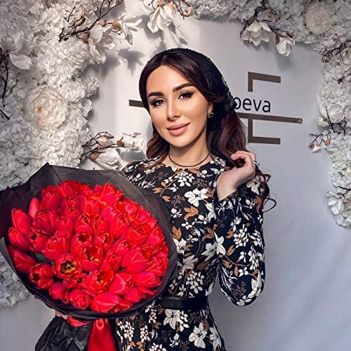 Элина Дагаева