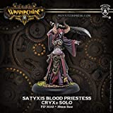 Privateer Press Cryx: Warcaster Attachment: Satyxis Blood Priestess (Resin/Metal) Miniature Game Figure