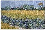 RLJHG Posters para Pared Vista de Arles con Lirios de Vincent Van Gogh Cuadros Abstractos Decoracion...