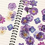 TTBH Lovely Flower Stickers Creative Perfume Bottle Decorative Adhesive Stickers For Scrapbooking DIY Diary Photo Album40 Pcs/Pack