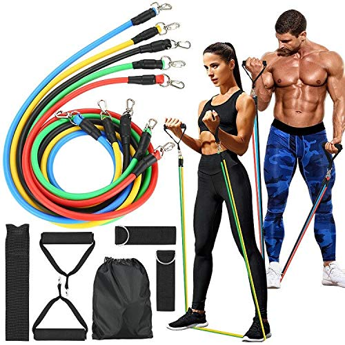 tebrigo Resistance Bands Set,Exercise Bands with Handles,Door Anchor,Ankle Straps,Fitness Bands for Training,Home…