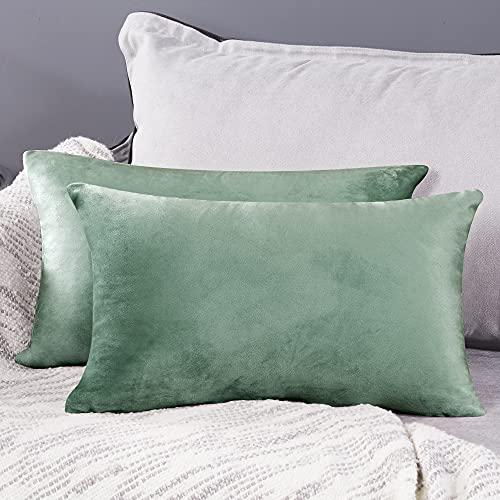 Deconovo Fundas para Cojines de Almohada del Sofá Cubierta Suave Decorativa Protector para Hogar 2 Piezas 30 x 50 cm Verde Claro