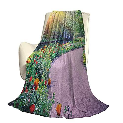 Jardin Confortable Série Maison Couvertures Paysage de Printemps avec Tulipes Colorées Jardin de Keukenhof aux Pays-Bas Horticulture Léger pour Salon L60 x L50 Pouce Multicolore